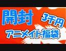 【開封】初売り!アニメイトの3千円福袋!かぜり@なんとなくゲーム系動画の購入品紹介