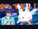 青ざめるランクバトル奮闘記-絶望のサニーゴ編-【ポケモン剣盾】