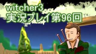 探し人を求めてwitcher3実況プレイ第96回
