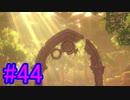 【ポケモン剣盾】物語をじっくり楽しみながら旅をする☆パート44【実況】