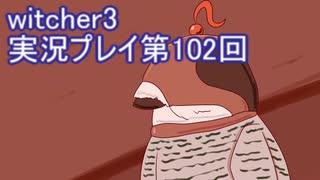 探し人を求めてwitcher3実況プレイ第102回