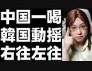韓国が「中国への旅行をやめるように」言いだし掛けた途端に中国から一喝!? 一転して検討予定へ後退