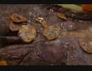 今夜は 牛肉のステーキよ!5 飯目