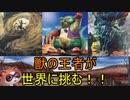 【遊戯王 ADS】オーストラリアの覇者が世界を制すぞ!!【ゆっくり解説】