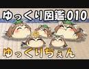 【ゆっくり図鑑010】ゆっくりちぇん