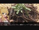 【音威子府TOKYO】唯「北の国から真っ黒お蕎麦がやってきた」