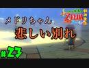 【小さな勇者の飲み実況】ゼルダの伝説 風のタクト HD part23【24歳フリーター】