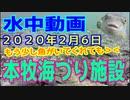水中動画(2020年2月6日)in 本牧海づり施設