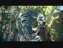 【MHW】一狩りいこうか【実況】#7/トビカガチ