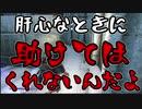 【実況】新約・加速するスカイリムの旅 Page417