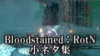 Bloodstained:RotN 小ネタ集