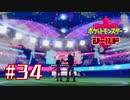 ガラルの未来【ポケットモンスターシールド】#34(終)