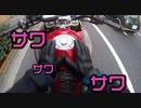 【皇居前・丸の内・桜田門・日本橋】都内気ままにツーリングしながらディーラーを目指すだけ【バイク女子】