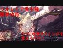 【MHW:IB】リオレイア希少種ソロハンマー簡単必勝攻略法