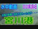 水中動画(2020年2月4日)in 宮川港
