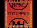 【MHP3】狩人の集う秘湯【高音質】