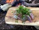 ソロキャンプ!焚き火で料理。 鯛のお刺身とホタルイカのアヒージョ