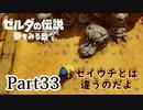 求むー「ゼル伝」のプロー【ゼルダの伝説 夢をみる島】 part33