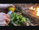 ソロキャンプ!焚き火で料理。チキンステーキ
