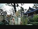 緊急特別会員動画第2回『「武漢パンデミック関連」と「女性宮家関連」』