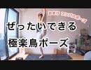 極楽鳥のポーズ【 解説編 】腕と足の押し合いっこがポイント☆パラダイスバード