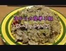 【1分弱料理祭】 ゆかりの簡単ご飯 #番外編 ガーリックライス