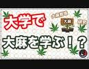 カナダの大学で大麻が学べる!!研究や栽培方法なども!?