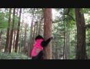 【脱走だーッ!23】黒猫キキくん
