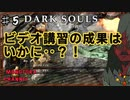 【DARK SOULS】酔いどれ呪術師が行くPART5【モノアイ攻略】