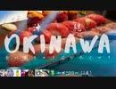 【沖縄旅行】冬でも海満喫!動画投稿者8人が行く、絶景沖縄車旅【グルメ&ダイビング】
