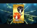 【Fate/Grand Order】 カタメカクレウィッグ [バーソロミュー・ロバーツ] 【Valentine2020】