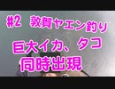 【#2 イカ釣り動画】巨大タコ、巨大アオリイカ同時に出現!急な展開で大慌て!ヤエン釣り遠征