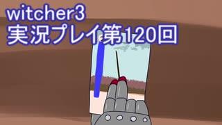 探し人を求めてwitcher3実況プレイ第120回