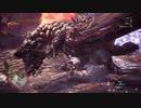 【MHW:I】vsバゼルギウス 一部縛りプレイ
