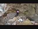 【黒猫キキくんと行く釣り場:秘密の場所】=猫とジジと遠投カゴ釣り=