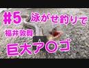【#5 釣り動画】巨大ア〇ゴが釣れた!アジの泳がせ釣りでヒットしました!