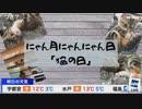 にゃん月にゃんにゃん日「猫の日」 (2020-02-22)