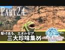 【実況】しっかり者(笑)のFF14!新生エオルゼア編 part24