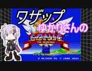 【ソニック2】ワザップゆかりさんのソニックザヘッジホッグ2【裏技】