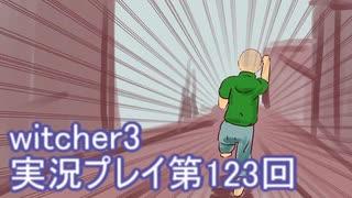 探し人を求めてwitcher3実況プレイ第123回