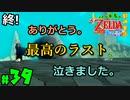 【小さな勇者の飲み実況】ゼルダの伝説 風のタクト HD part39【24歳フリーター】