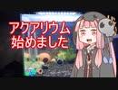 【アクアリウムVOICEROID部】死神茜ちゃんのアクアリウム日記1【ヤマトヌマエビ水槽デカエビ編】