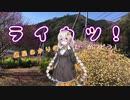 【紲星あかり車載】ライカツ! 第22回 ~春の予感♪~