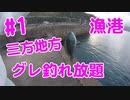 【#1 釣り動画】大量!福井県三方地方でグレが釣れ放題! フカセ釣りの極み