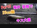【釣り動画 Part2】福井敦賀で20cm級のキスがたくさん釣れた!海釣り ドローン空撮あり