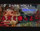 【DARK SOULS】酔いどれ呪術師が行くPART7【モノアイ攻略】