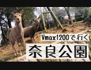 【Vmax1200】奈良公園を探検【Motovlog】