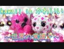 kawaii is かわいい~世界の常識♪~