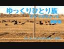 【ゆっくり】ひとり旅『アメリカちょっと横断編』 Vol.14