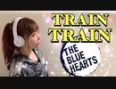 TRAIN-TRAIN@歌ってみた【ひろみちゃんねる】